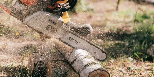 A close up of an electric saw vutting through a thin tree trunk, wood shavings are flying into the air.