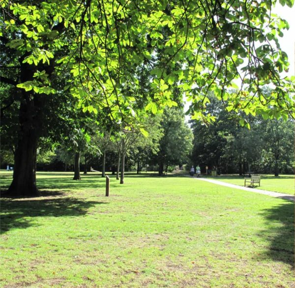 A leafy park with green grass and trees on the left of the image. A path runs through the green and a small wooden bench sits beside the path.