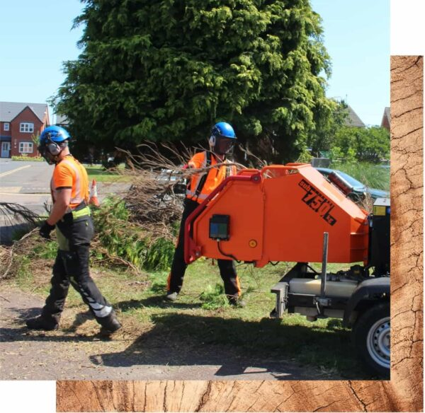 Two Streetwise workers with hi-vis jackets and blue helmets. One worker places tree branches into a red wood chipper on wheels.