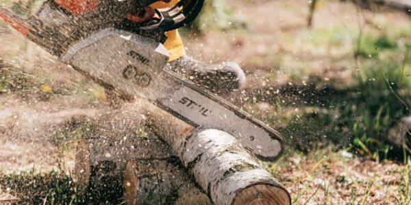 A thin felled tree trunk is shown and a saw is cutting it into sections. Saw dust flies off the tree and the saw