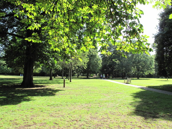 A leafy park with green grass and green leafy trees around the edges, a small pathway runs through the image with a couple walking with a pram, and a light wooden bench sitting beside the path.