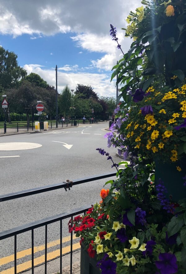 Streetwise Flower Display in West Bridgford